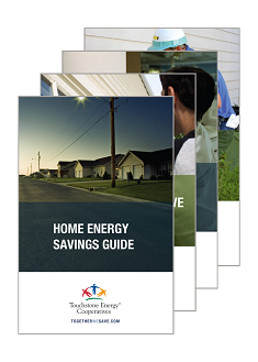 Home Energy Savings Guide Brochure Logo